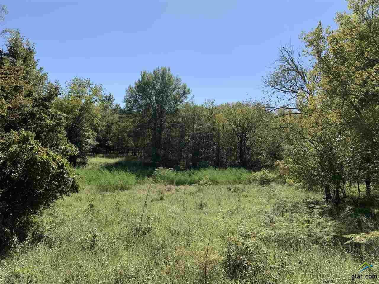98.44 Acres Farm To Market 412 - Photo 1