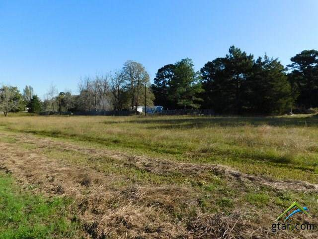 TBD Cr 3111, Pittsburg, TX 75686 (MLS #10128447) :: Griffin Real Estate Group