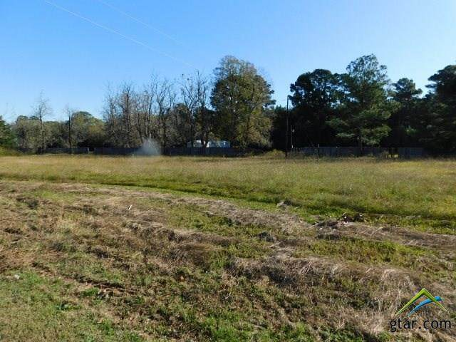 TBD Cr 3111, Pittsburg, TX 75686 (MLS #10128448) :: Griffin Real Estate Group