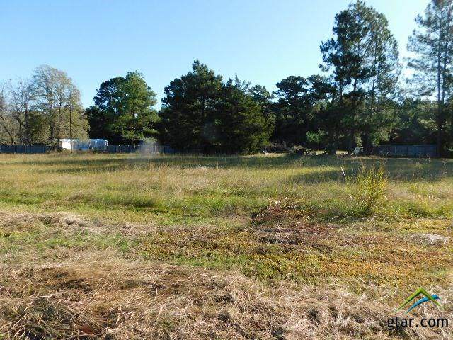 TBD Cr 3111, Pittsburg, TX 75686 (MLS #10128449) :: Griffin Real Estate Group