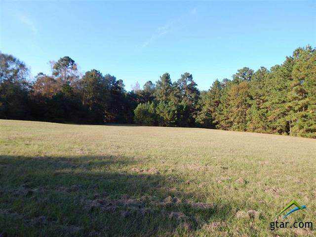 TBD 7.1 Acres Hollybrook, Gilmer, TX 75644 (MLS #10128947) :: Griffin Real Estate Group