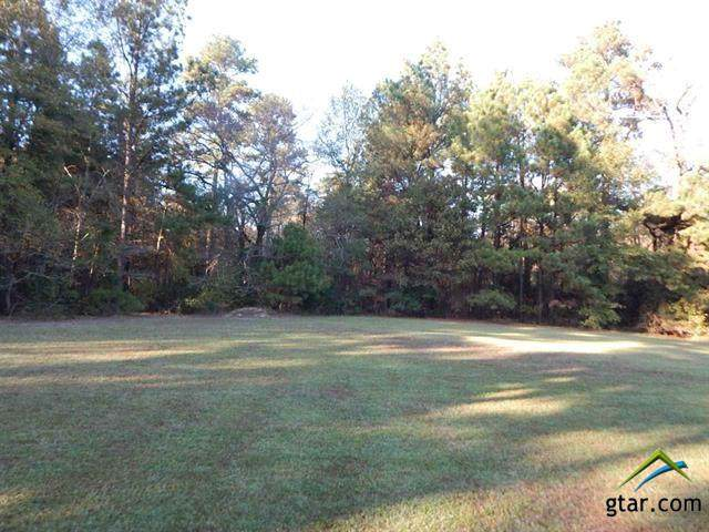 TBD 12.4 Acres Briarwood, Gilmer, TX 75645 (MLS #10129044) :: Griffin Real Estate Group