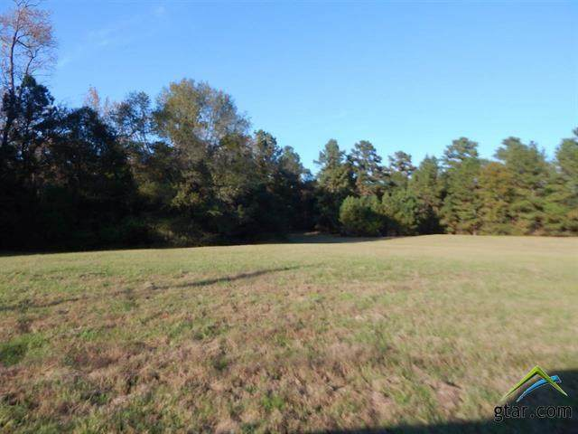 TBD 19.5 Acres Woodway Lane, Gilmer, TX 75645 (MLS #10129185) :: Griffin Real Estate Group