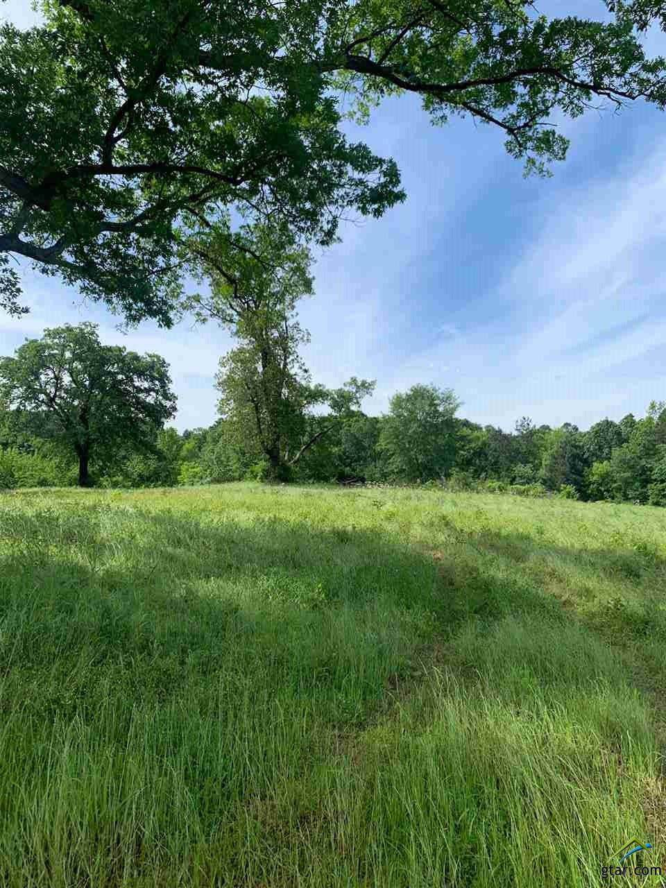 TBD 3.712 acres Holt - Photo 1