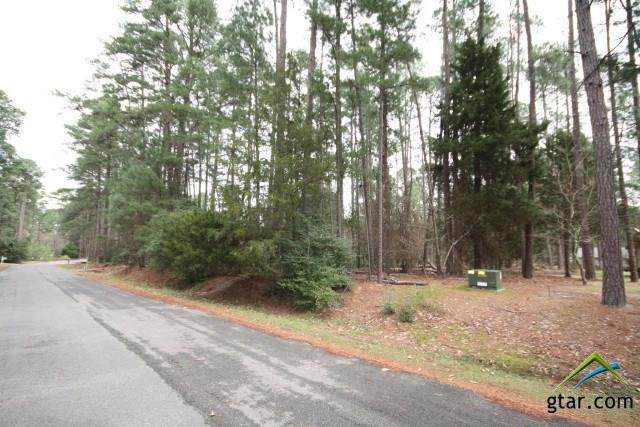Section 4 Lot 232, Holly Lake Ranch, TX 75765 (MLS #10129355) :: Griffin Real Estate Group