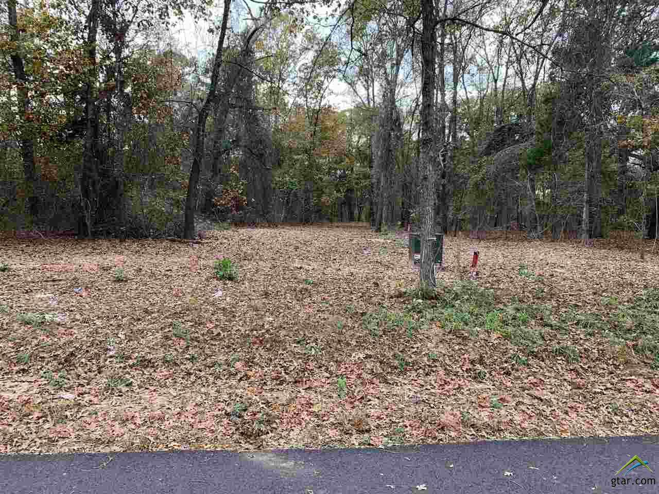 Tract 7 Old Tyler Rd. - Photo 1
