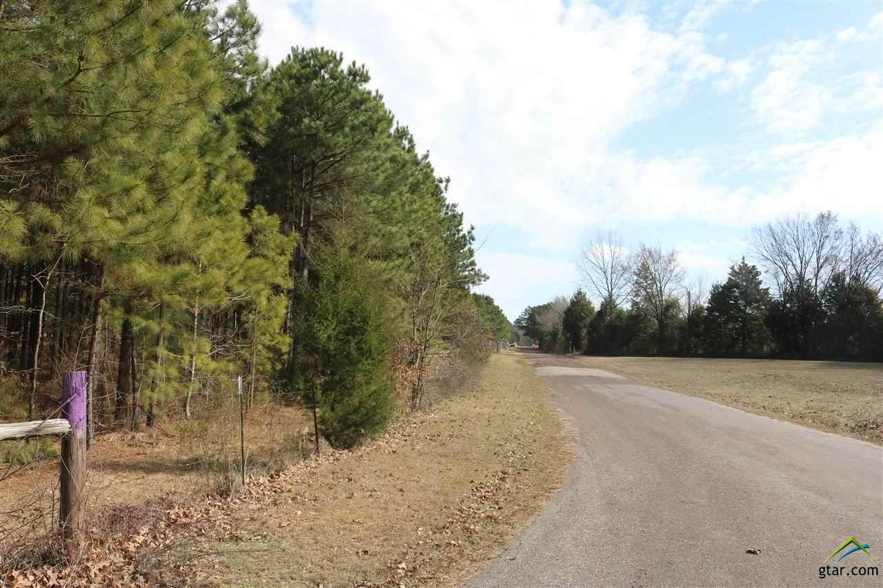 TBD Fm 2263 & Bluebell Road Tract 3 - Photo 1