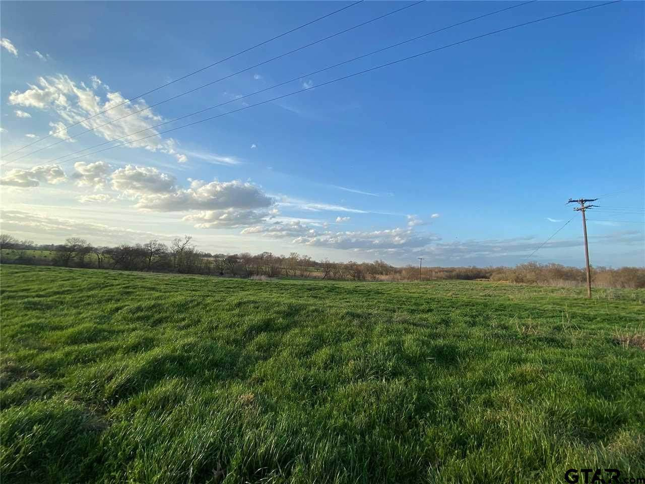 Lot 1 Farm Road 3105 - Photo 1