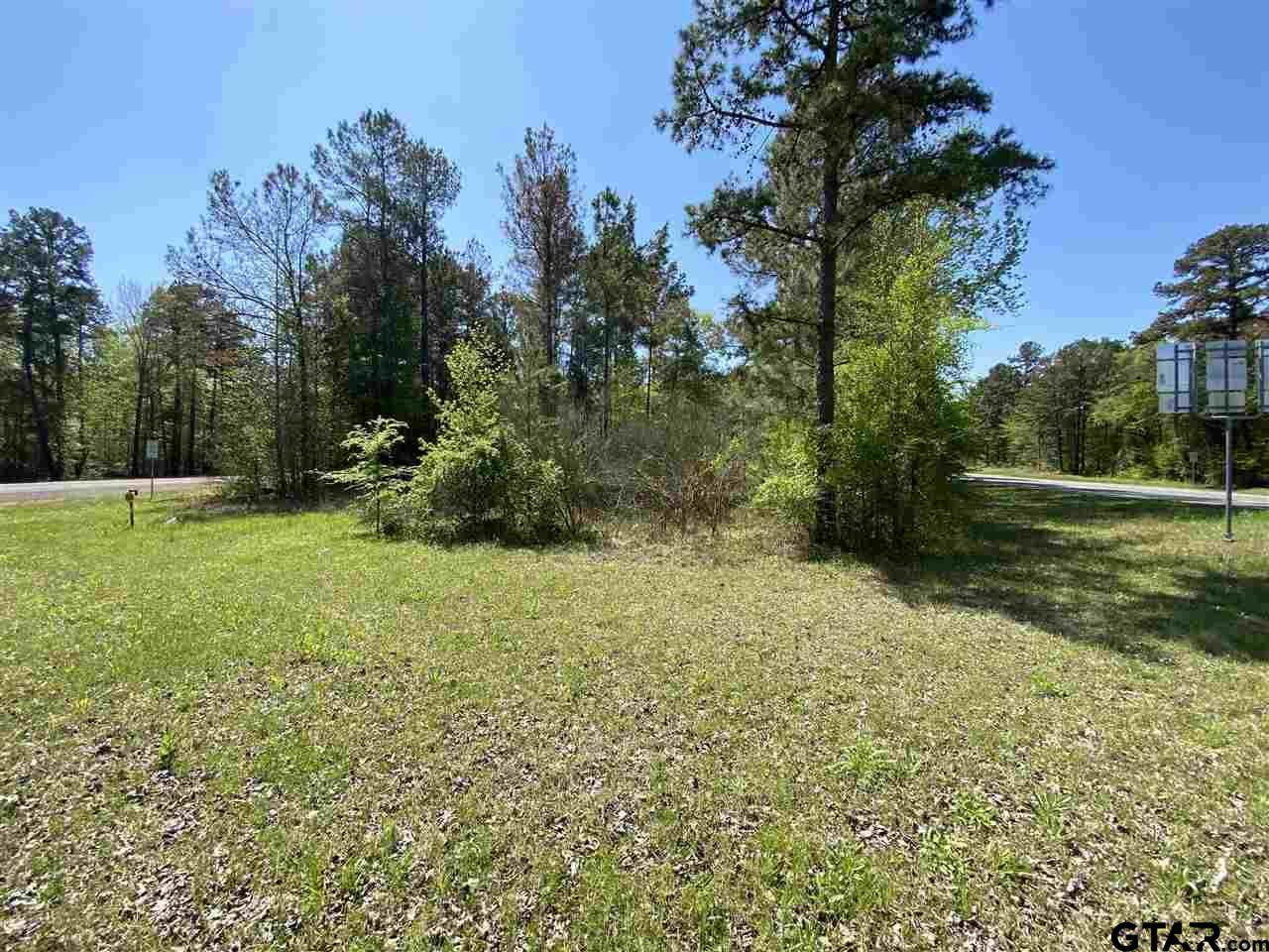 Tract 3 Fm 850 & Hwy 42 - Photo 1