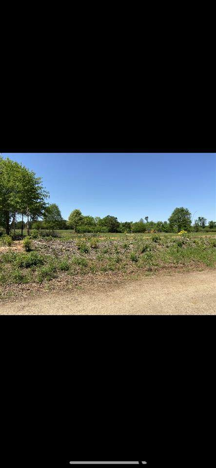 LOT 14 Cr 3224, Winona, TX 75792 (MLS #10133332) :: The Wampler Wolf Team