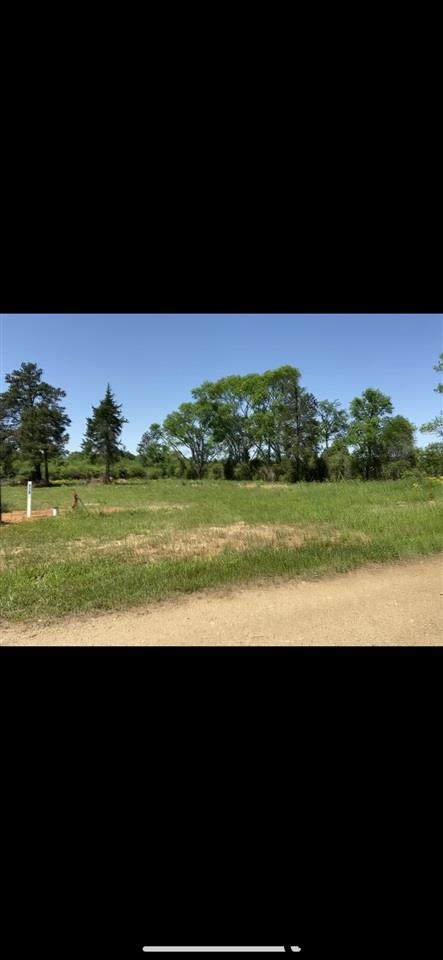 LOT 17 Cr 3224, Winona, TX 75792 (MLS #10133335) :: The Wampler Wolf Team