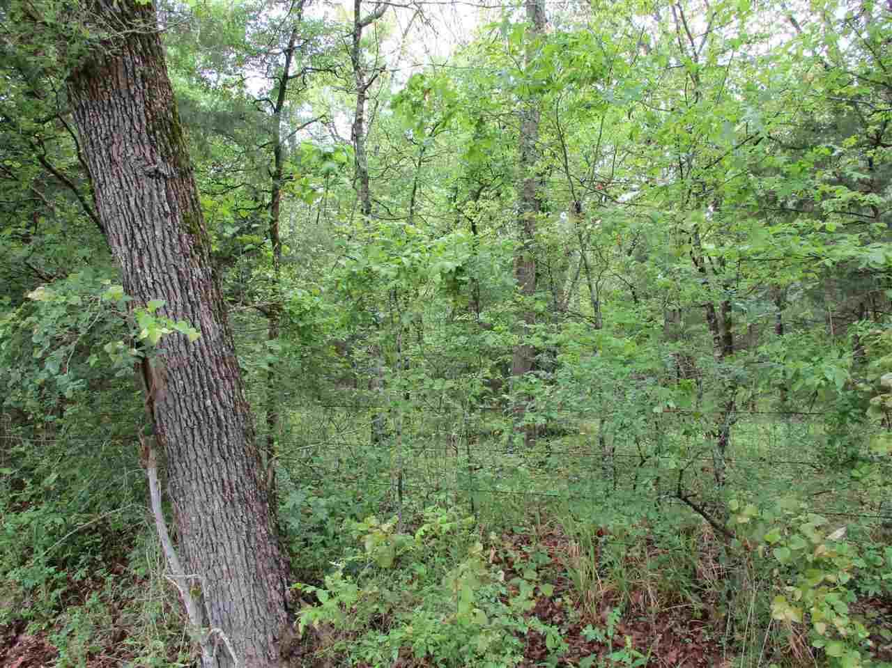 TBD Rains County Road 4525 - Photo 1
