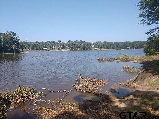 Lot 203 Waters Edge Dr., Larue, TX 75770 (MLS #10133660) :: The Edwards Team