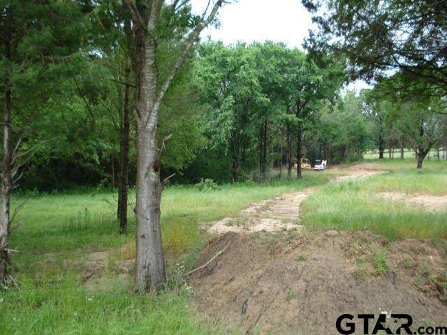 TBD State Hwy 37, Winnsboro, TX 75494 (MLS #10134750) :: Griffin Real Estate Group