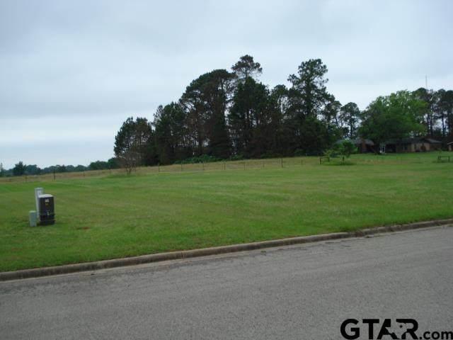 Lot 77 Dela Cruz Drive, Winnsboro, TX 75494 (MLS #10134780) :: Griffin Real Estate Group