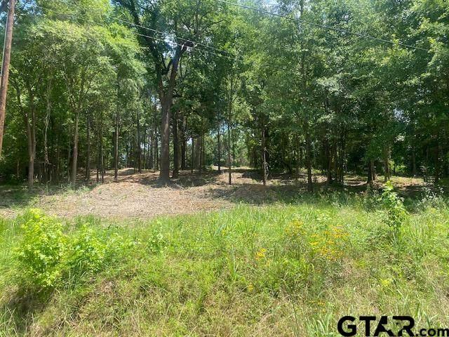 614 E Lake Devernia, Longview, TX 75604 (MLS #10136084) :: Griffin Real Estate Group