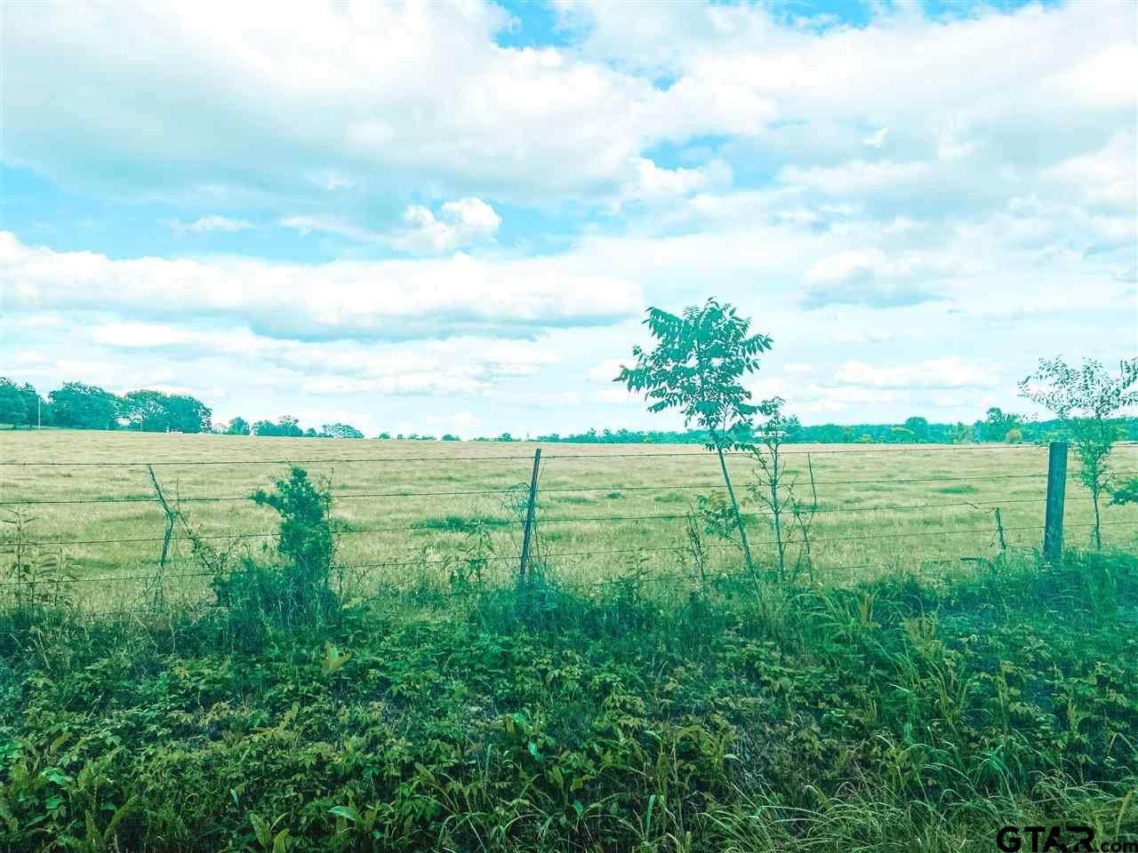 X County Road 1342 - Photo 1