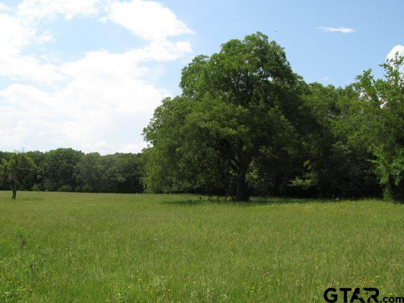 TBD County Rd 1111 - Photo 1