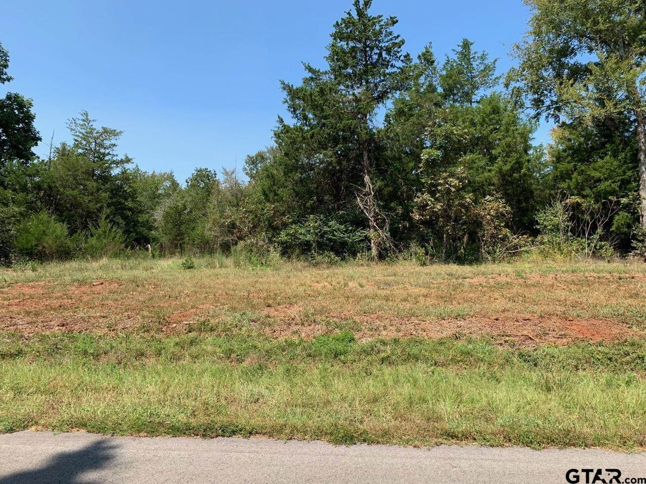 Tract 2 Moser Ln - Photo 1