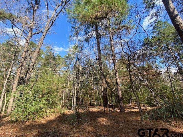 LOTS 284-286 Peachtree Lane, Holly Lake Ranch, TX 75765 (MLS #10140705) :: The Edwards Team