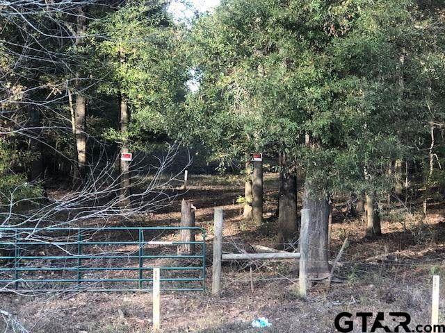 TBD Hwy 110 N, Troup, TX 75789 (MLS #10141330) :: Griffin Real Estate Group