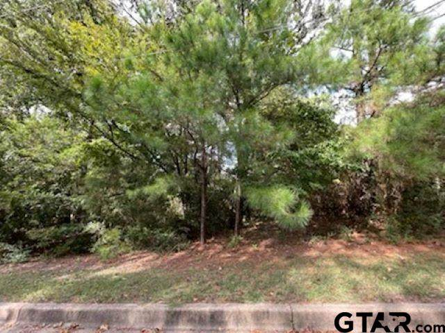 TBD Tall Timber Dr., Tyler, TX 75703 (MLS #10141467) :: Dee Martin Realty Group