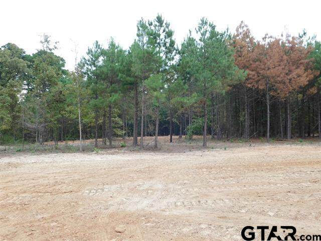 TBD Forget Me Not, Gilmer, TX 75644 (MLS #10141682) :: Griffin Real Estate Group
