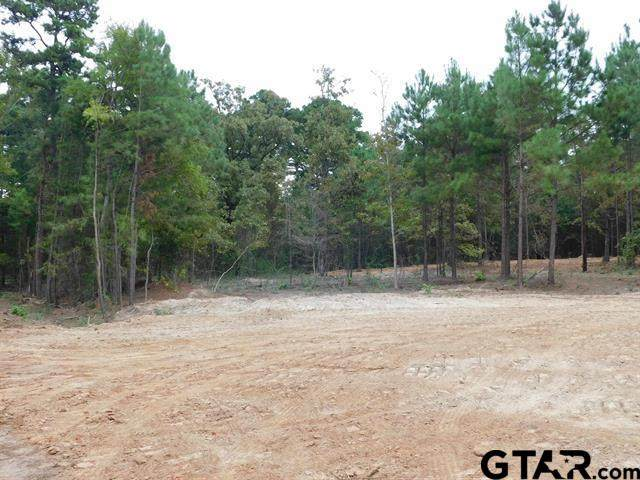 TBD Forget Me Not, Gilmer, TX 75644 (MLS #10141683) :: Griffin Real Estate Group
