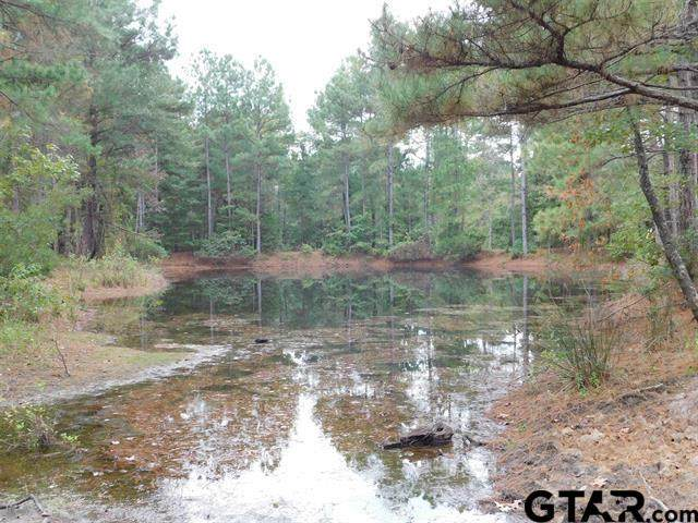 TBD Forget Me Not, Gilmer, TX 75644 (MLS #10141684) :: Griffin Real Estate Group