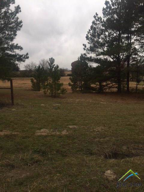 000 Fm  2710, Lindale, TX 75771 (MLS #10102368) :: Griffin Real Estate Group