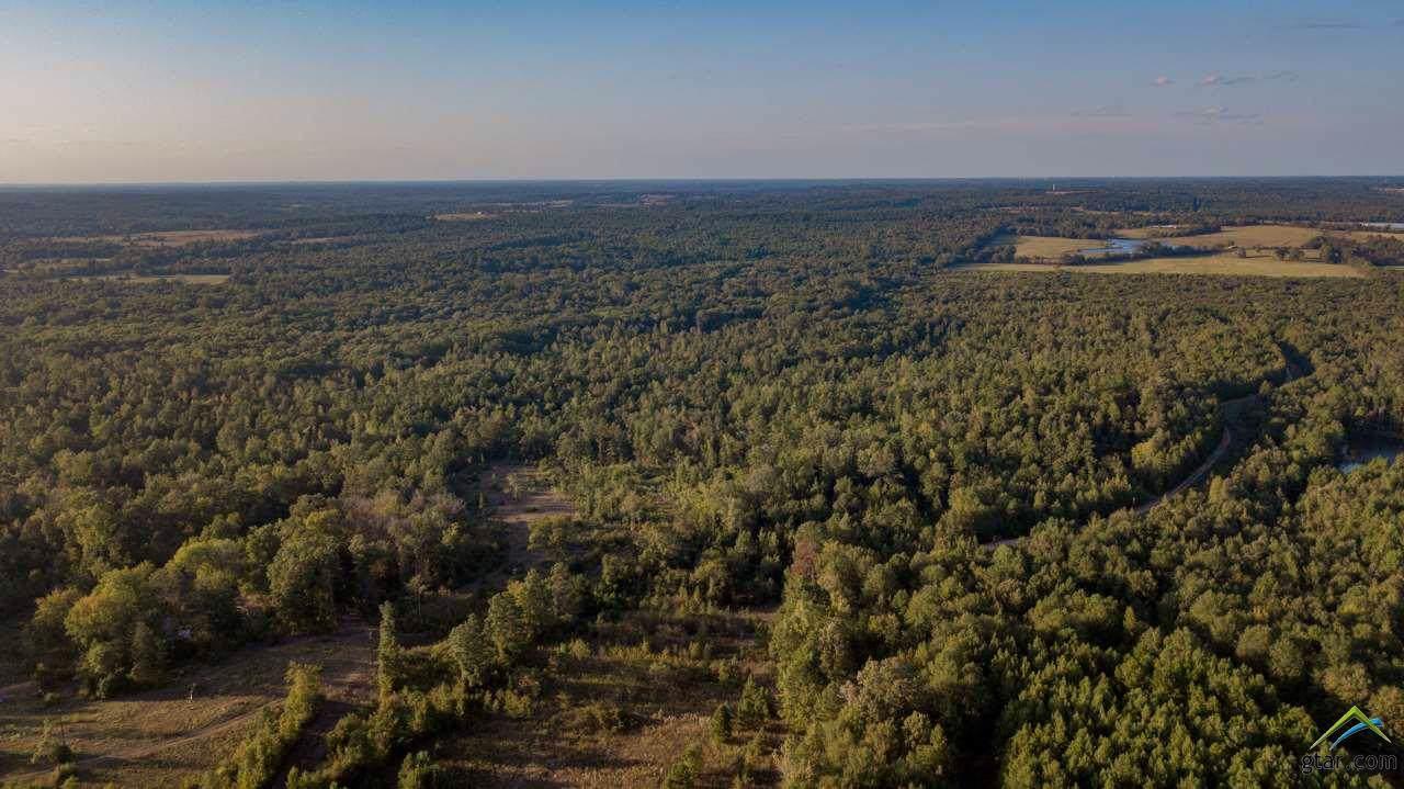 TBD Cr 435 D 305 Acres - Photo 1