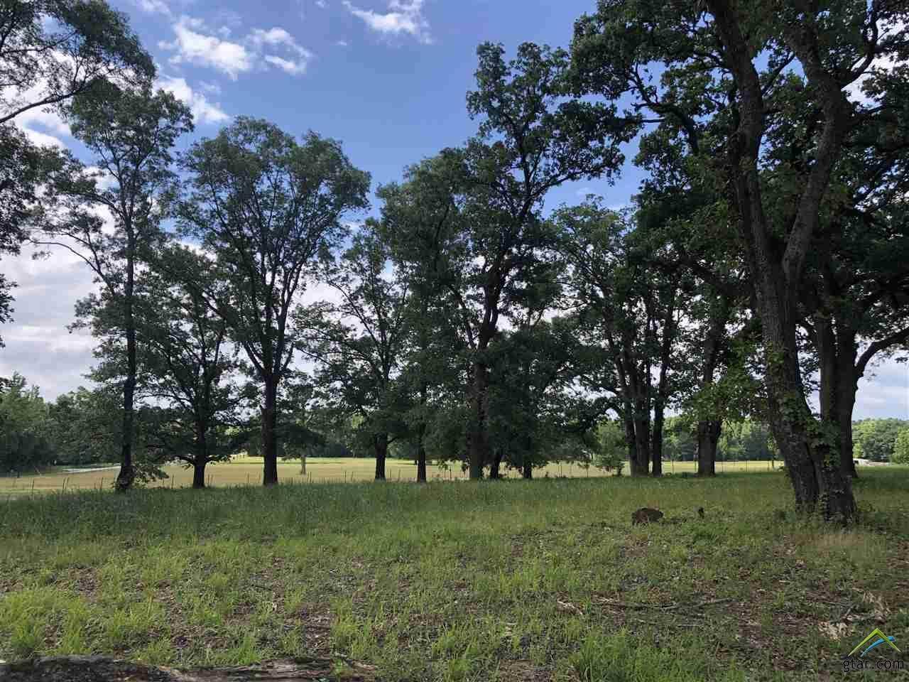 18358 Timber Oaks Dr (Lot 2) - Photo 1