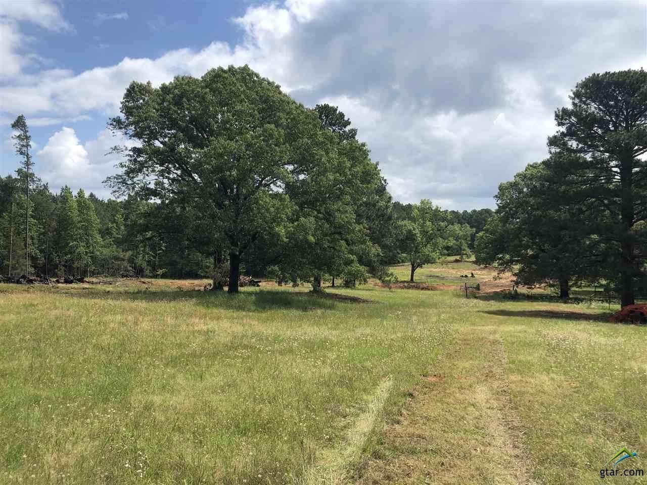 18322 Timber Oaks Dr (Lot 8) - Photo 1