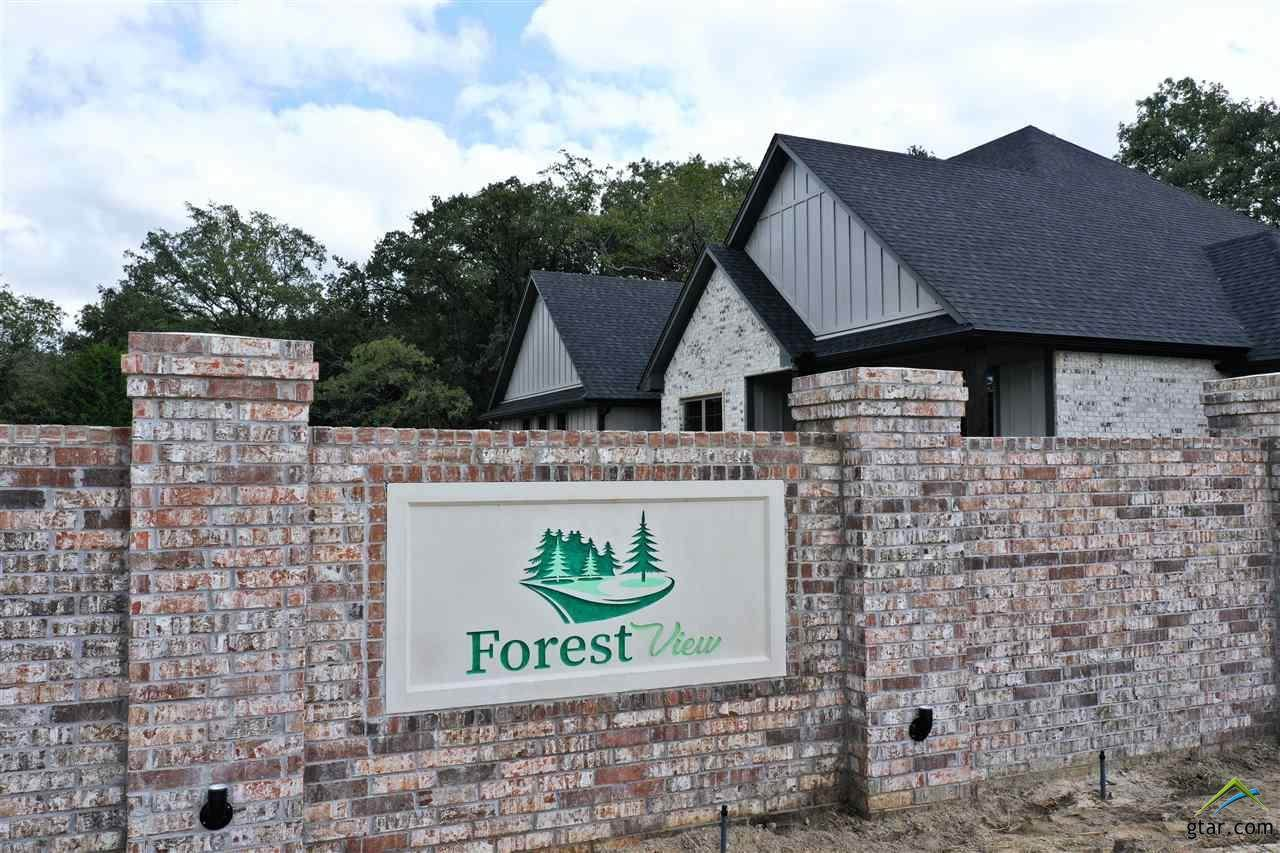 Lot 10 Forest View Circle - Photo 1