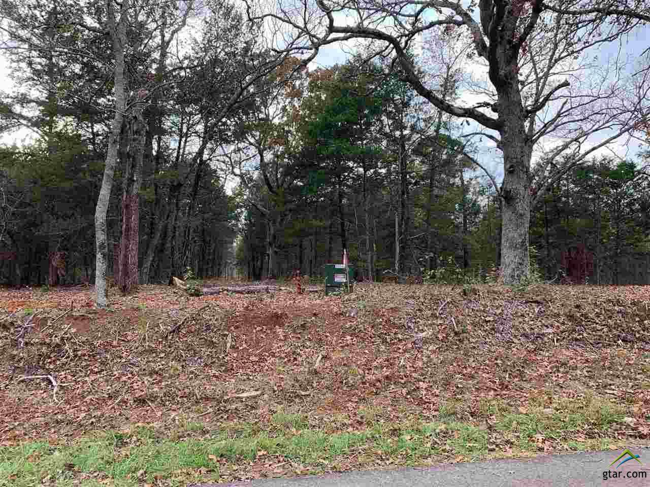 https://bt-photos.global.ssl.fastly.net/tyler/orig_boomver_3_10128933-2.jpg
