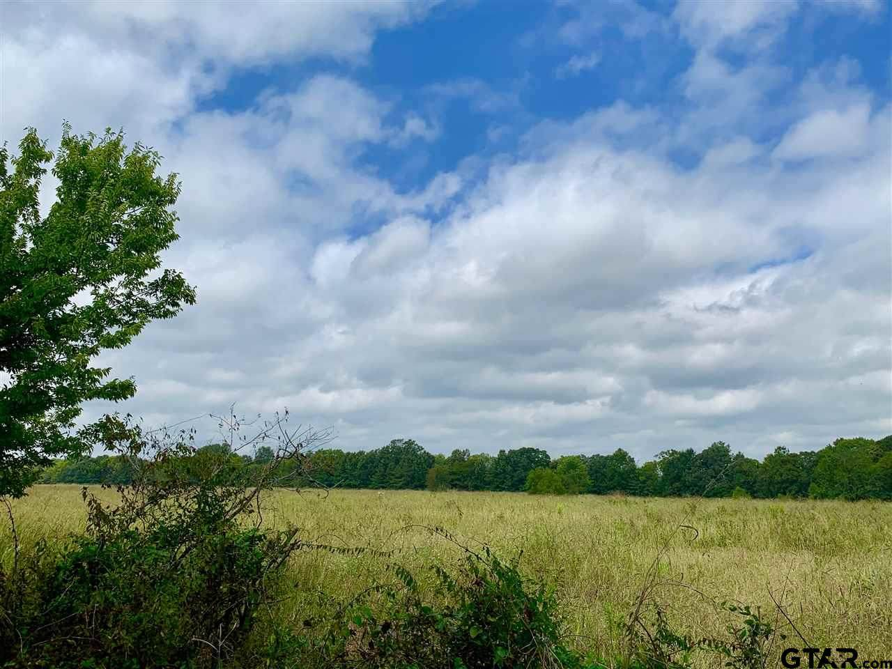 Tract 4 County Road 1350 - Photo 1