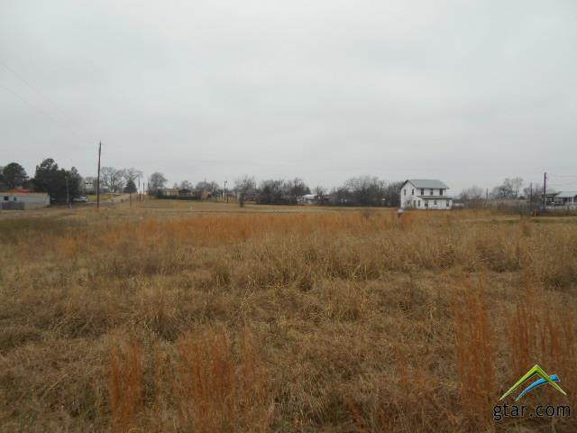 Lot 219 Apache, Quitman, TX 75783 (MLS #10130469) :: The Wampler Wolf Team