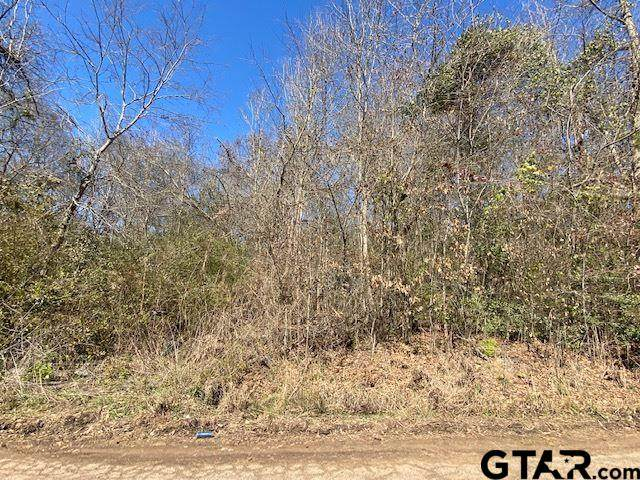 107 Pr 4014 (Cherokee Trace) - Photo 1