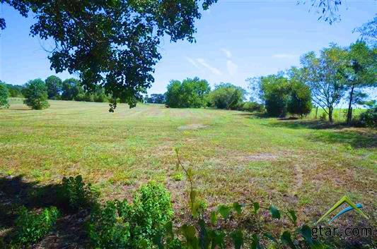 18800 N Hwy 110- Lot 1, Troup, TX 75789 (MLS #10060316) :: RE/MAX Impact