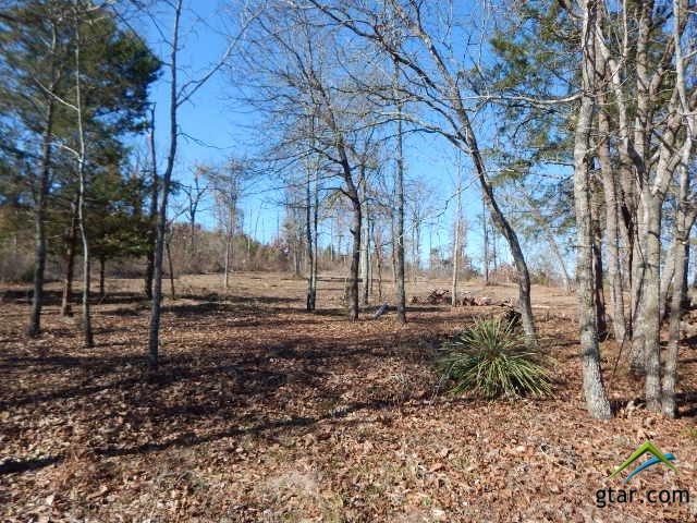 TBD Lot 113 Raintree Lakes, Big Sandy, TX 75755 (MLS #10090491) :: RE/MAX Impact