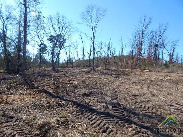 TBD Lot 111 Raintree Lakes, Big Sandy, TX 75755 (MLS #10090493) :: RE/MAX Impact