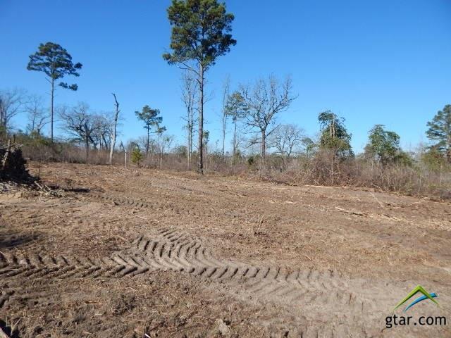 TBD Lot 112 Raintree Lakes, Big Sandy, TX 75755 (MLS #10090494) :: RE/MAX Impact