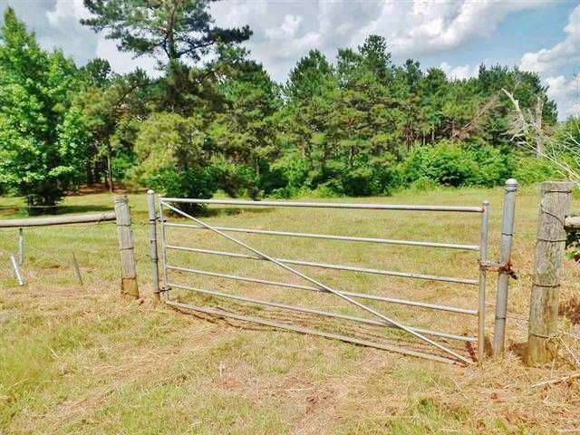 1200 Cr 4101, Jacksonville, TX 75766 (MLS #10095325) :: The Wampler Wolf Team