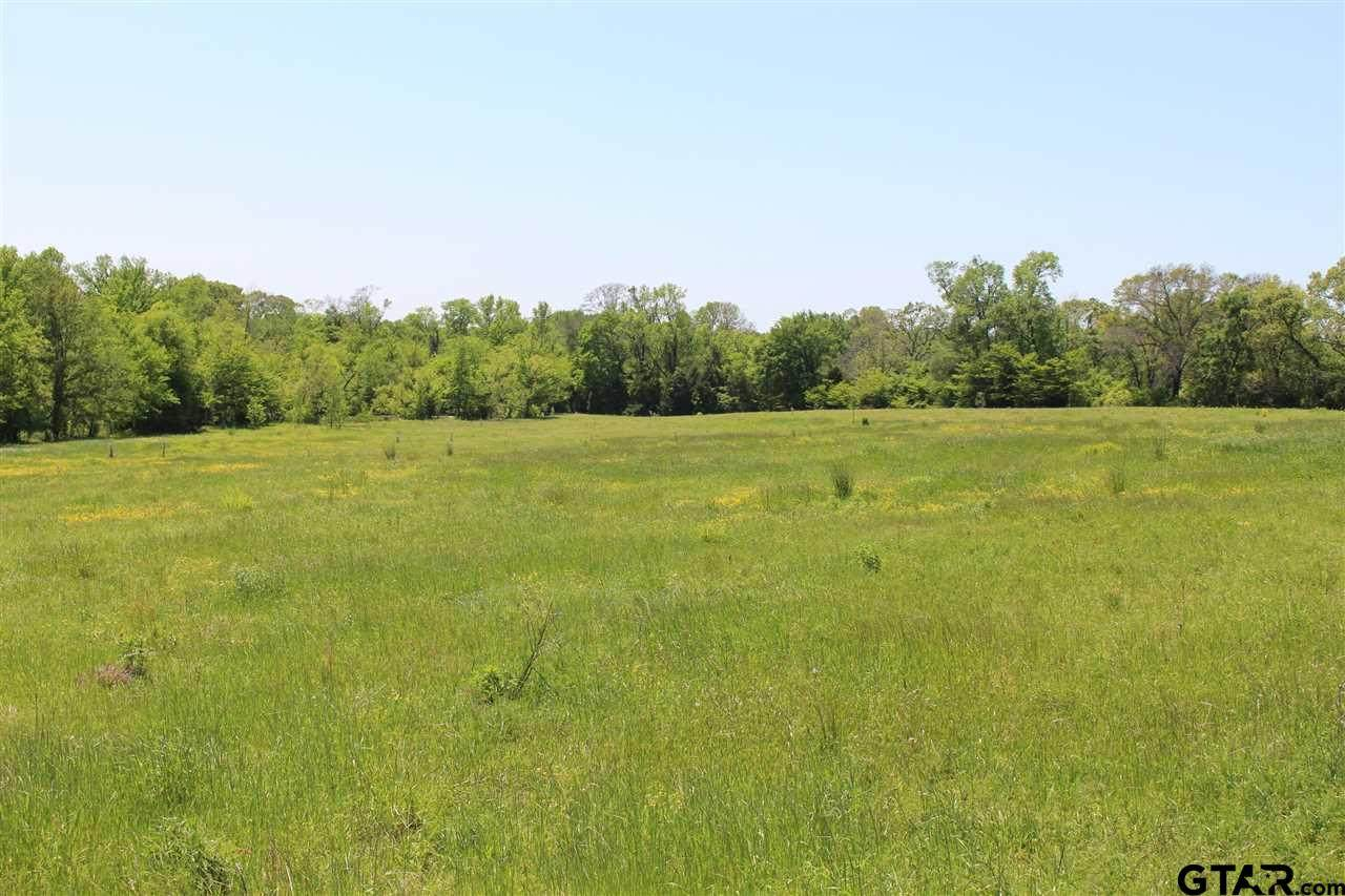 169 Rs County Road 2410 - Photo 1