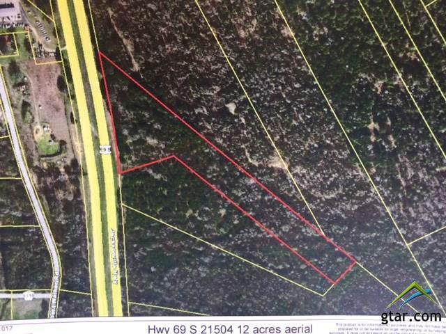 21505 S Hwy 69, Tyler, TX 75703 (MLS #10084918) :: RE/MAX Impact