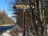Grouse - Photo 3