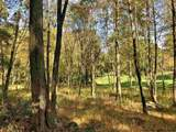 41 Fern Wood Way - Photo 14