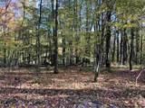41 Fern Wood Way - Photo 15