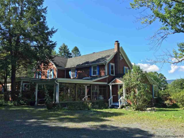 1066 Wittenberg Road, Mt. Tremper, NY 12457 (MLS #20173888) :: Stevens Realty Group
