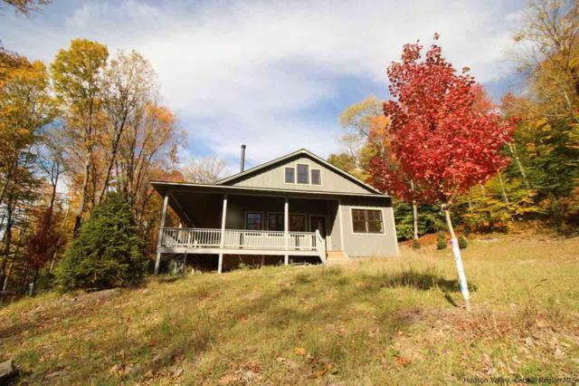 20 Blueberry Hill Drive, Lew Beach, NY 12758 (MLS #20180786) :: Stevens Realty Group